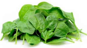 kandungan gizi dan manfaat sayur bayam