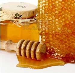 khasiat-madu-lebah