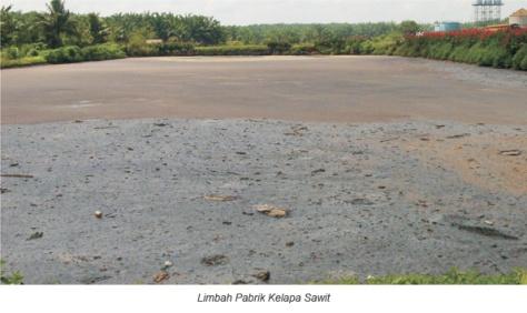 limbah pks